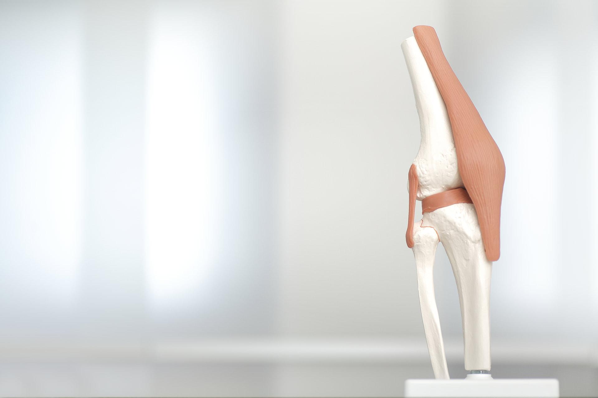orthopädische Leistungen